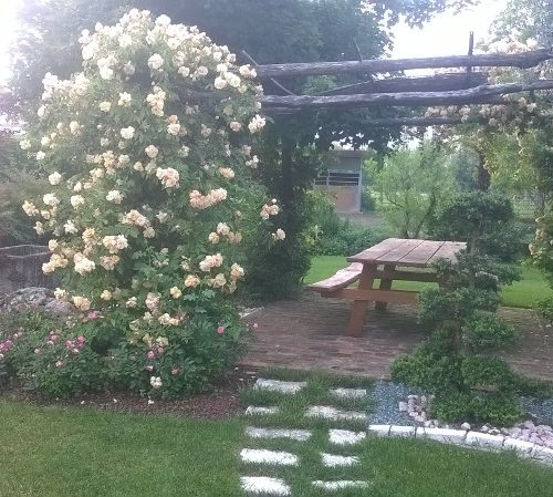 progettazione giardini vicenza