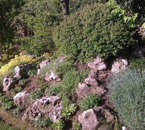 Giardiniere domicilio Vicenza provincia